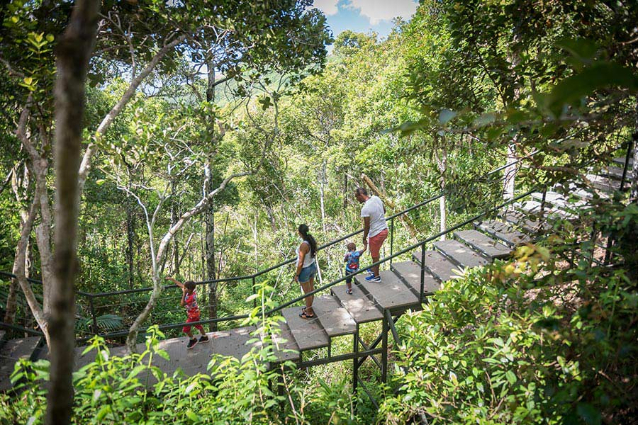 Family Raised Walkway - Ebony Forest - Mauritius